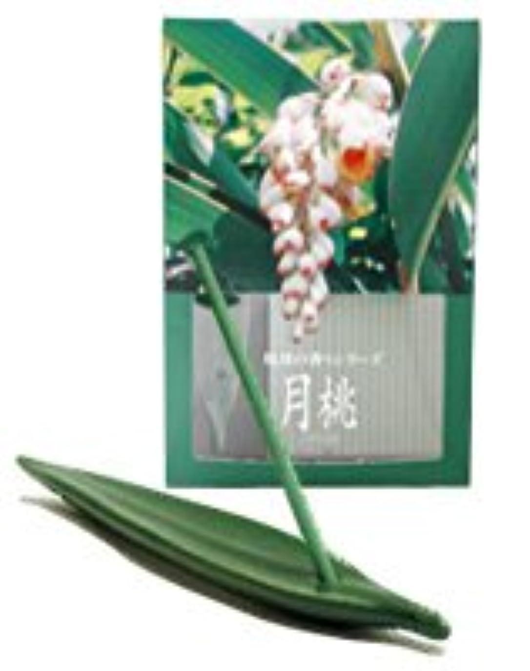 灌漑アクセサリー分注する月桃 お香(お香立て付) [20本入り]