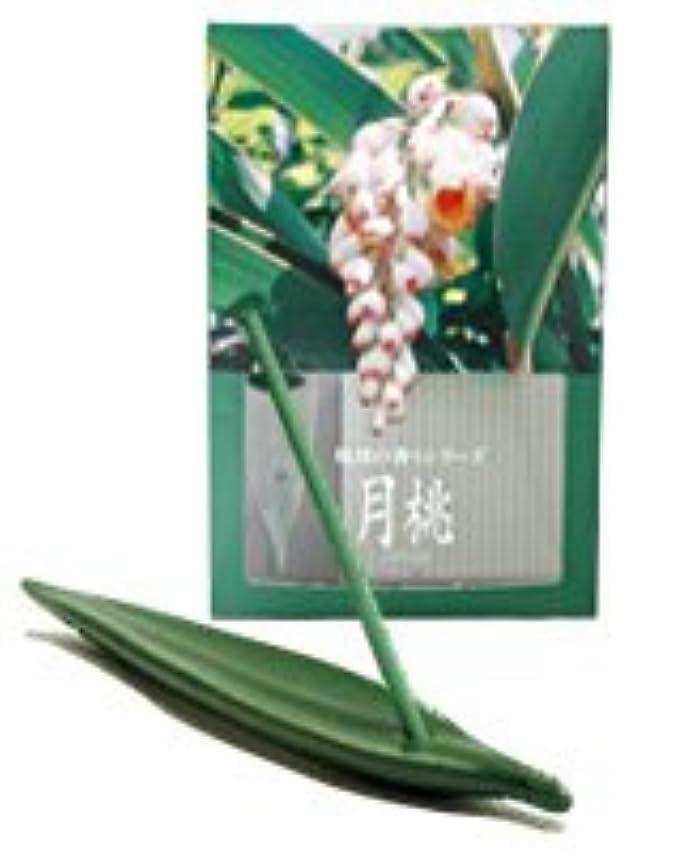 保守的水運動月桃 お香(お香立て付) [20本入り]