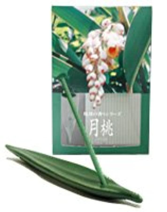 野望型不変月桃 お香(お香立て付) [20本入り]