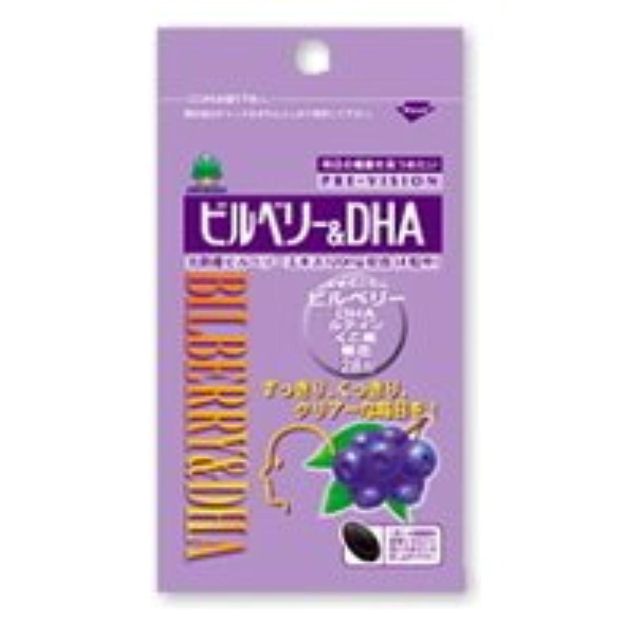 診断するレオナルドダ電圧プレビジョン ビルベリー&DHA 28粒