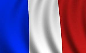 Hommy フランス国旗 ポリエステル旗 フランスの旗メイプル休暇フラグビッグバナー 150*90CM … (フランス)