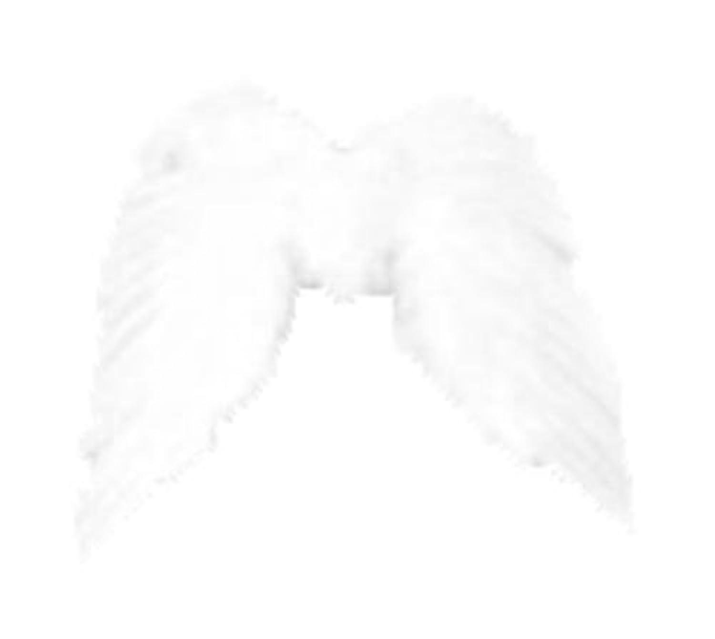 スプレッドウィング ホワイト M