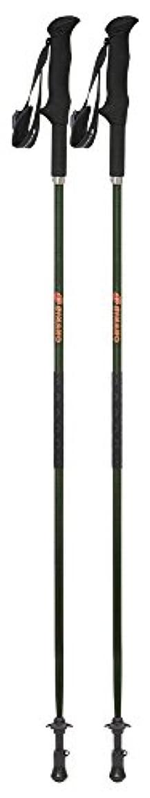 起点に対処するラベシナノ(SINANO) 登山 トレッキングポール ウルトラライト スリップストッパー付き フォルダーFP 125cm グリーン 113410