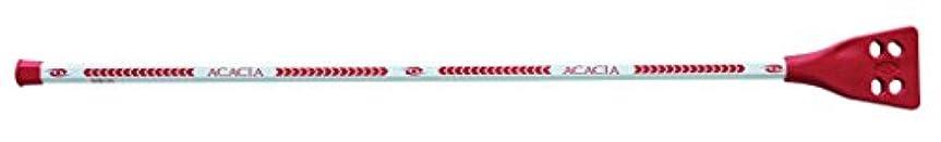 物理的な逆説対象Acacia Deluxe Broomball Sticks