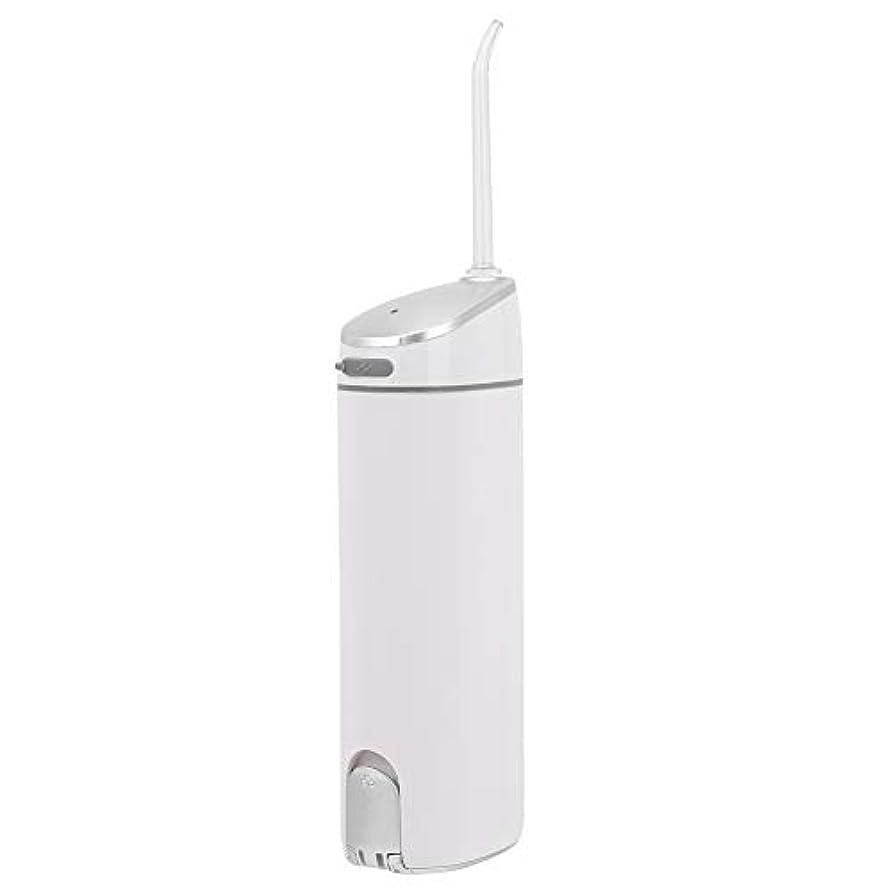 不正直プレゼンわかるUSB充電電動デンタルフロス歯クリーナー家庭用歯ワッシャー、デンタルワッシャー、男性用および女性用