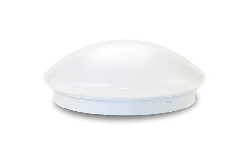 シーリングライト LED 4畳 ~6畳 和室 洋室 蛍光灯 引掛式 小型 照明器具 天井照明 簡単取付 工事不要 従来照明交換 PSE認証済み 日本語説明書付け (4-6畳 ) (昼光色)