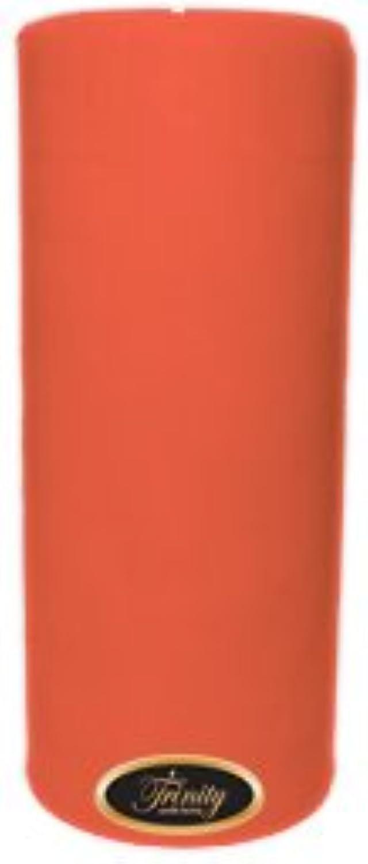 Trinity Candle工場 – ジョージアピーチ – Pillar Candle – 4 x 9