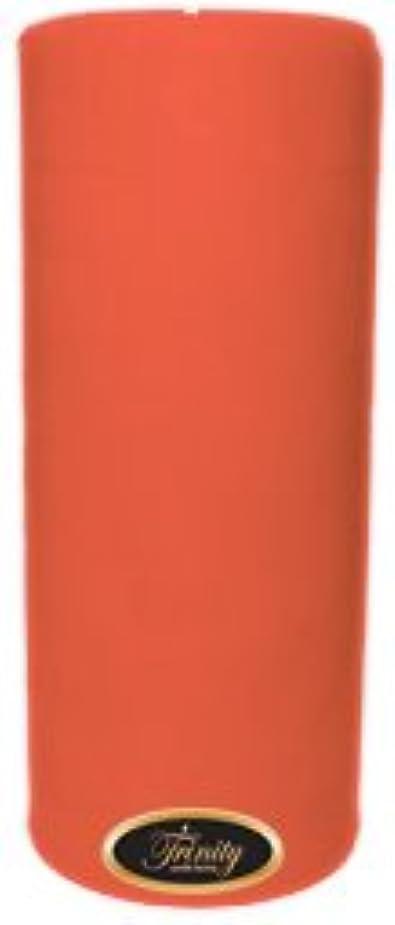 ギャロップ熟達した冷えるTrinity Candle工場 – ジョージアピーチ – Pillar Candle – 4 x 9