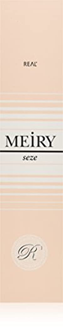 参加者省略倒錯メイリー セゼ(MEiRY seze) ヘアカラー 1剤 90g 9NB