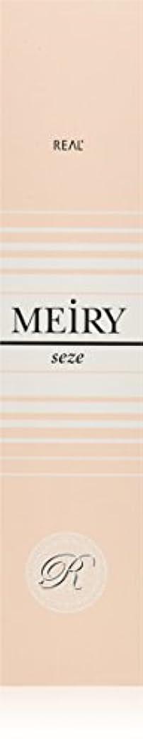 構造的時間故意のメイリー セゼ(MEiRY seze) ヘアカラー 1剤 90g 9NB