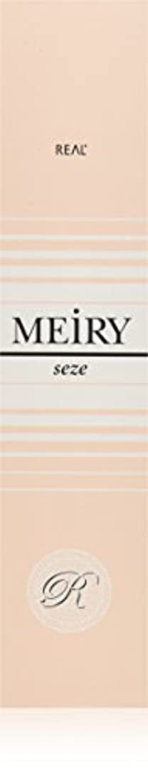 機械的にふざけたハーネスメイリー セゼ(MEiRY seze) ヘアカラー 1剤 90g 9NB