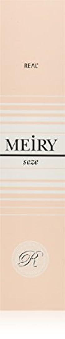 求人アルミニウムバイナリメイリー セゼ(MEiRY seze) ヘアカラー 1剤 90g 9NB