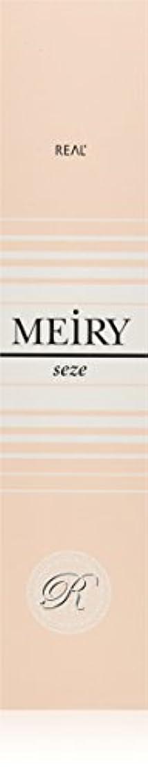 電気発動機クレアメイリー セゼ(MEiRY seze) ヘアカラー 1剤 90g 9NB