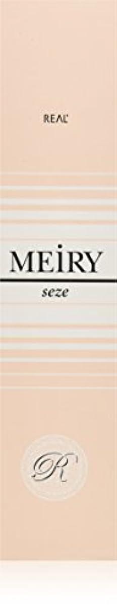 傾斜死すべき熱心メイリー セゼ(MEiRY seze) ヘアカラー 1剤 90g 9NB