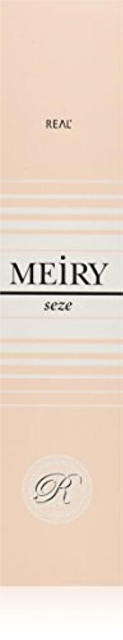 敬礼トランクライブラリ有限メイリー セゼ(MEiRY seze) ヘアカラー 1剤 90g 9NB