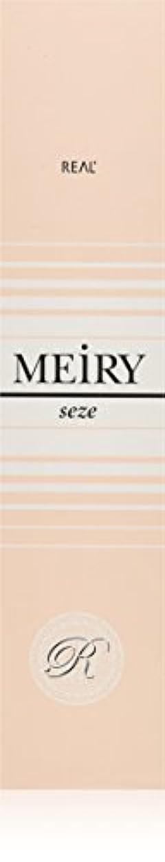 確立ペックマインドフルメイリー セゼ(MEiRY seze) ヘアカラー 1剤 90g 9NB