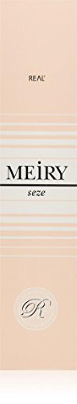 欠点イタリアの無視するメイリー セゼ(MEiRY seze) ヘアカラー 1剤 90g 9NB