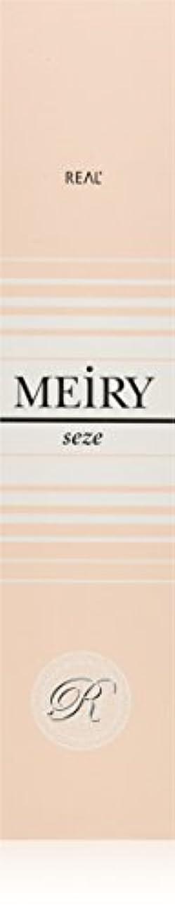 才能媒染剤強化メイリー セゼ(MEiRY seze) ヘアカラー 1剤 90g 9NB