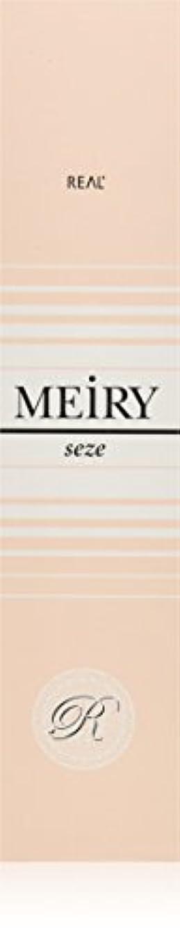 風心理学ディスクメイリー セゼ(MEiRY seze) ヘアカラー 1剤 90g 9NB