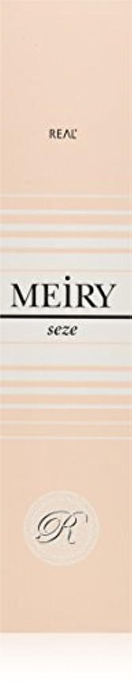 障害者頂点差別的メイリー セゼ(MEiRY seze) ヘアカラー 1剤 90g 9NB