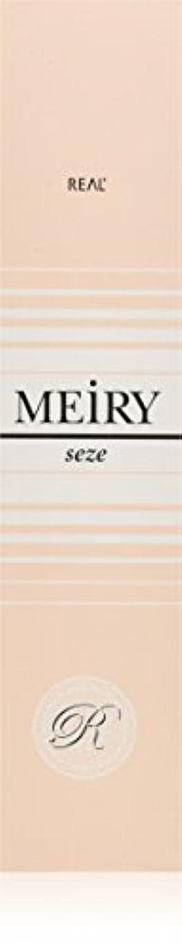 ピクニックモンキーメイドメイリー セゼ(MEiRY seze) ヘアカラー 1剤 90g 9NB