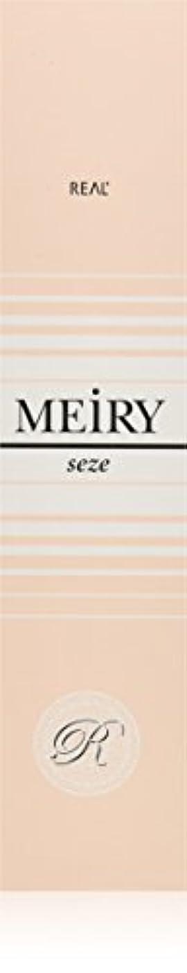 重々しい苦悩ウェイターメイリー セゼ(MEiRY seze) ヘアカラー 1剤 90g 9NB
