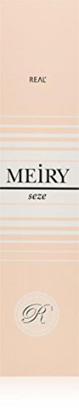 コジオスコ頑張るオーバーフローメイリー セゼ(MEiRY seze) ヘアカラー 1剤 90g 9NB