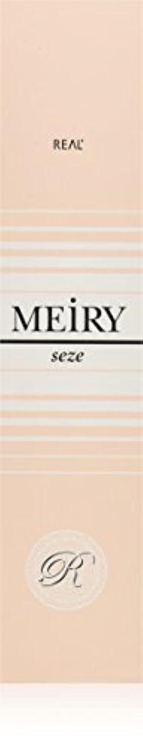 成功本部ベーリング海峡メイリー セゼ(MEiRY seze) ヘアカラー 1剤 90g 9NB
