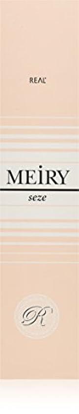 劇場ガチョウ元のメイリー セゼ(MEiRY seze) ヘアカラー 1剤 90g 9NB