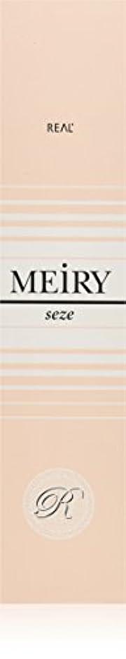 抵抗力がある活発パラダイスメイリー セゼ(MEiRY seze) ヘアカラー 1剤 90g 9NB