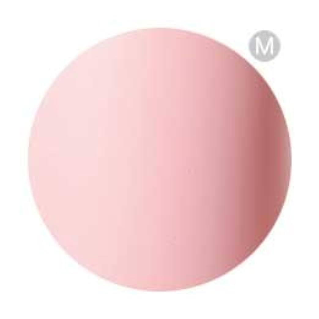 形状太平洋諸島ウェイターPalms Graceful カラージェル 3g 069 ベビーピンク