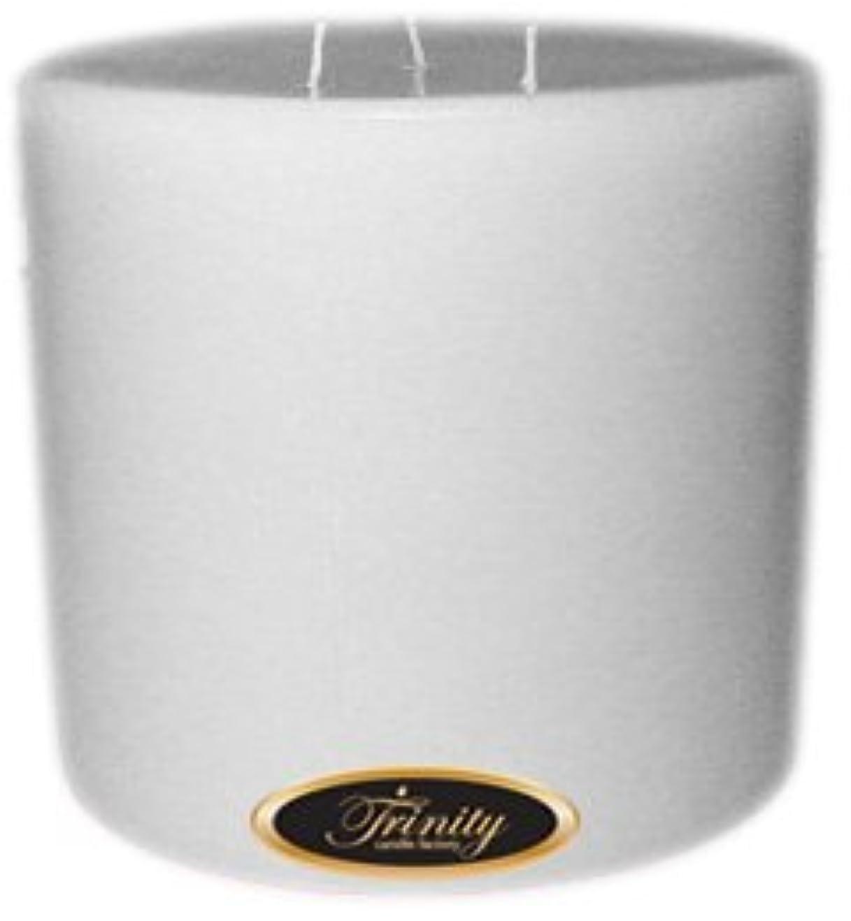 口径インディカキャンパスTrinity Candle工場 – Magnolia – Pillar Candle – 6 x 6