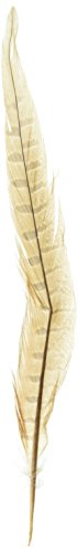Zucker b502Pheasant Tailフェザー、アソートカラー、2- Pack