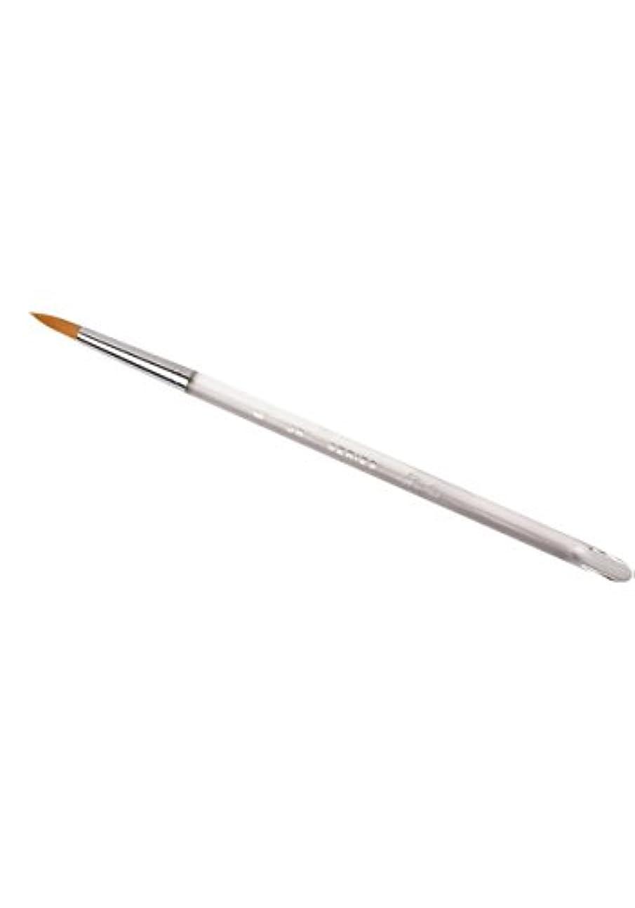扱いやすい引退する肌寒いエアジェル洗浄筆