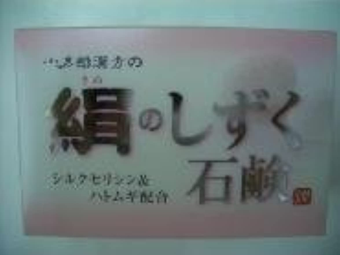 絹のしずく石鹸 コタロー80g4個