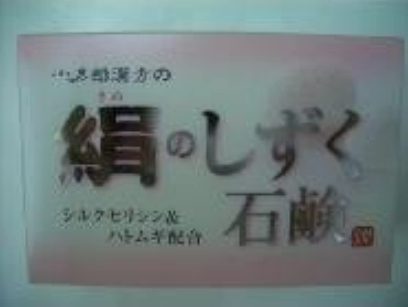 有毒な取り出す習熟度絹のしずく石鹸 コタロー80g12個 +240g進呈