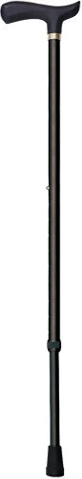 交渉するリダクター並外れたナカバヤシ エコノミータイプ/伸縮ステッキ/ブラック RQS-E101-BK 00013044 【まとめ買い3本セット】