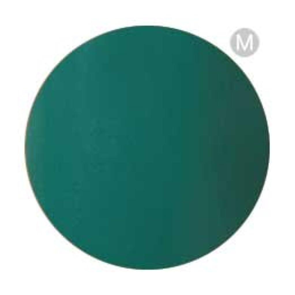 乏しいに沿ってサークルPalms Graceful カラージェル 3g 003 グリーン