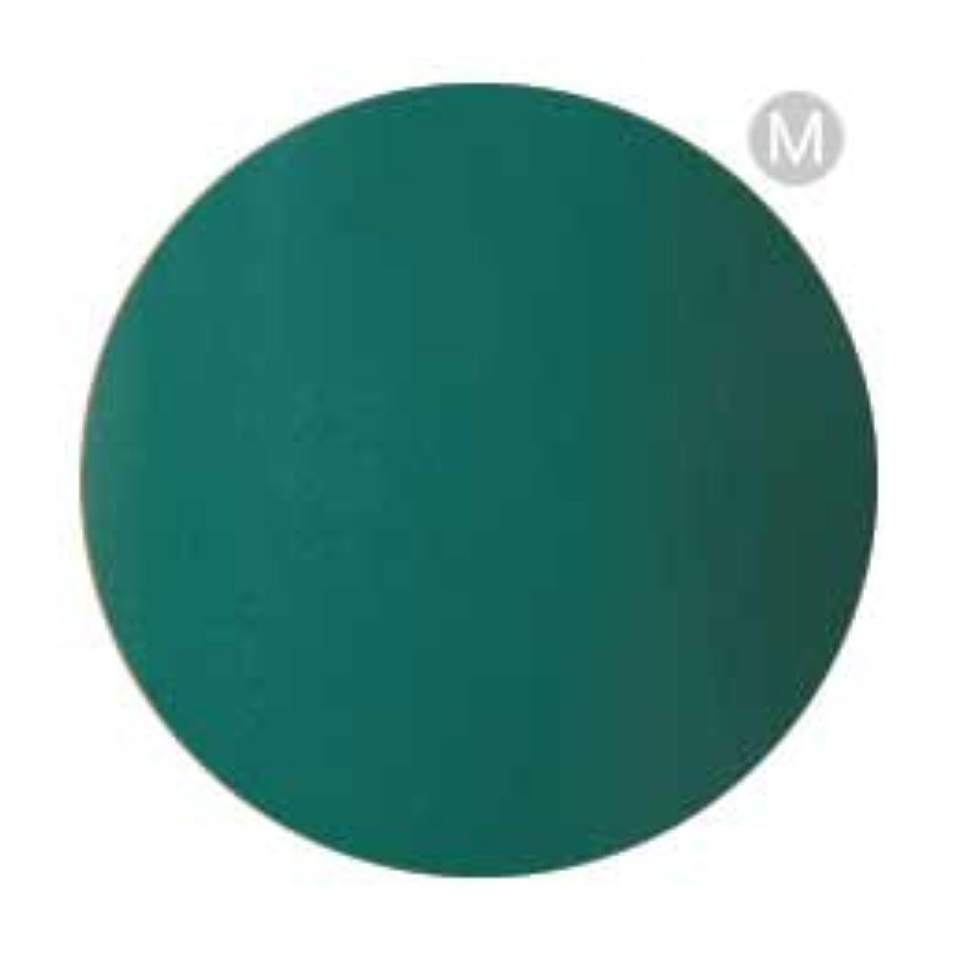 話をする誰の強化するPalms Graceful カラージェル 3g 003 グリーン