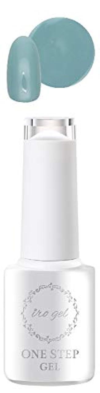 ディーラーステレオタイプ全体にirogel ワンステップジェル【D505】ネイルタウンジェル ジェルネイル ジェル セルフネイル ワンステップ 時短ネイル ノンワイプ