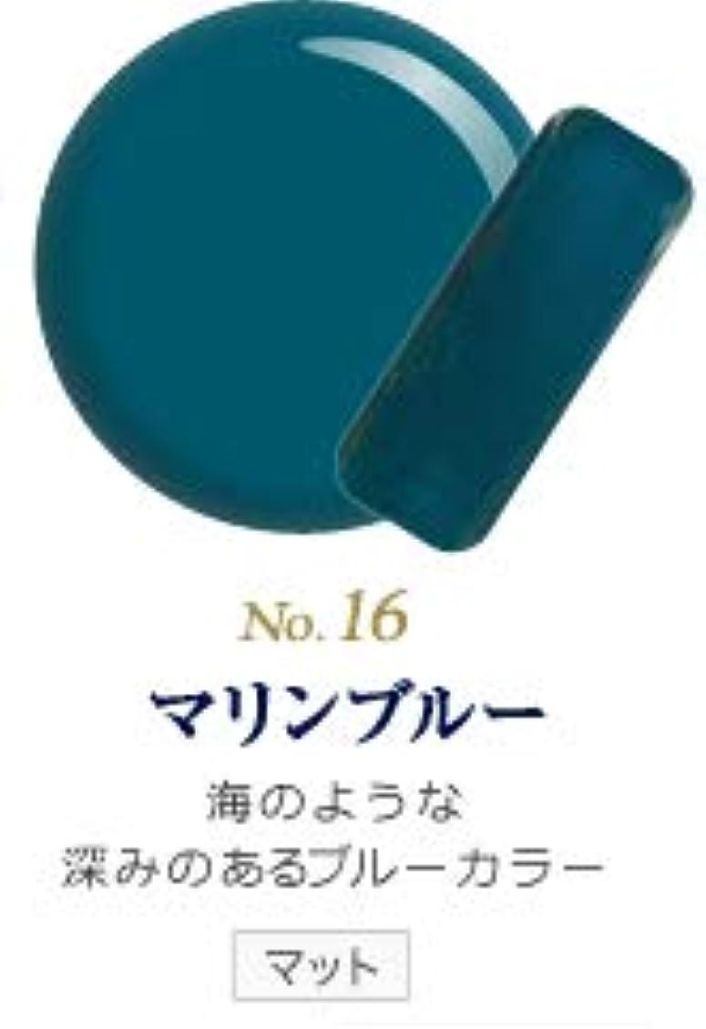 ノート縁石後ろに発色抜群 削らなくてもオフが出来る 新グレースジェルカラーNo.11~No.209 (マリンブルー)