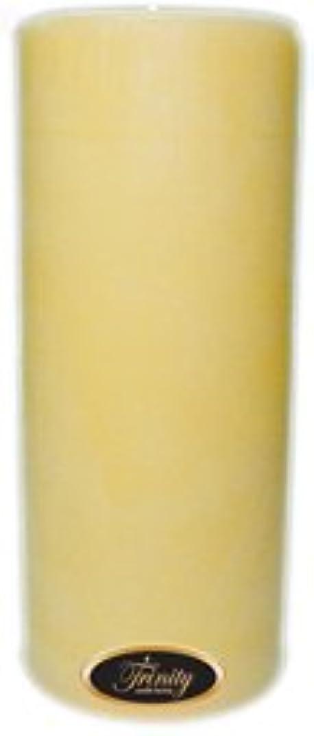 銀破産そうでなければTrinity Candle工場 – クリーミーバニラ – Pillar Candle – 4 x 9