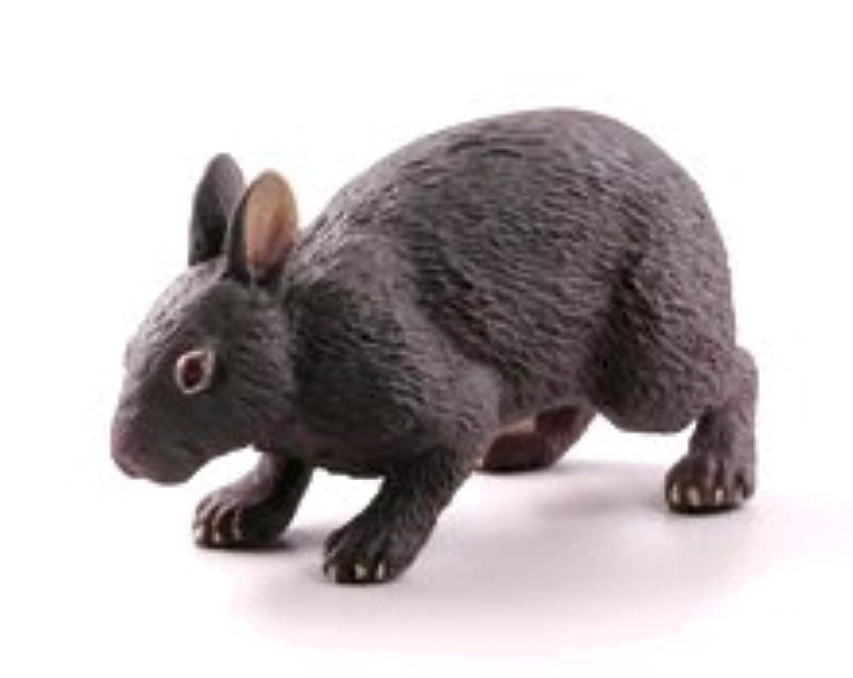 海洋堂 カプセルQミュージアム 日本の動物コレクション2 沖縄奄美/やんばるの森 アマミノクロウサギ 単品