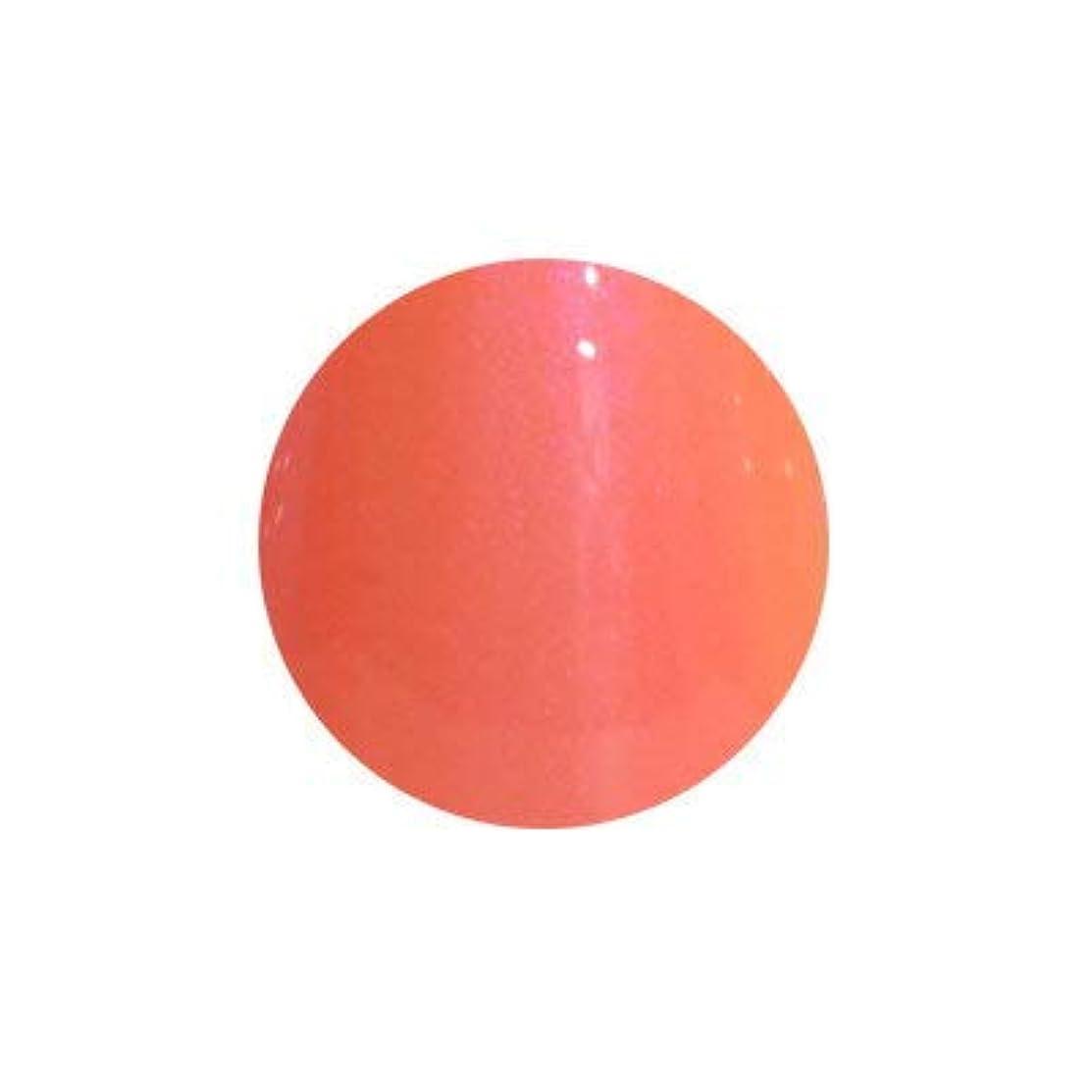 失礼有効化肝T-GEL COLLECTION カラージェル D138 レインボーコーラル 4ml