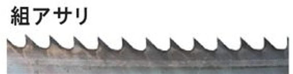 幽霊終了しました種RYOBI リョービ バンドソー用 6630080 帯鋸刃 組アサリ 幅:13mm