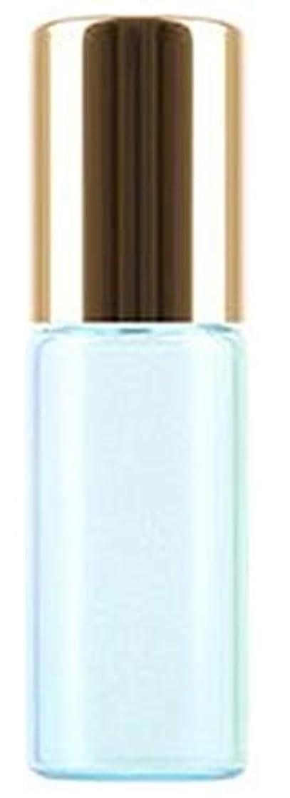 発表シーン観察するShopXJ 香水 詰め替え アトマイザー ロールオン タイプ 5ml 携帯 持ち運び ミニ サイズ (ブルー)