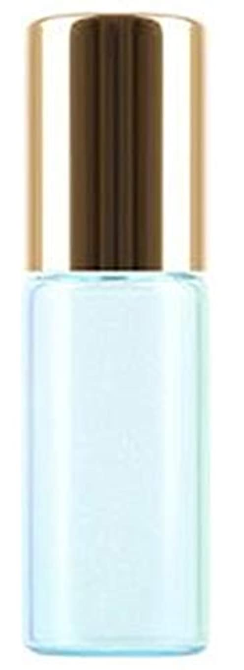 神秘的な死傷者トランスペアレントShopXJ 香水 詰め替え アトマイザー ロールオン タイプ 5ml 携帯 持ち運び ミニ サイズ (ブルー)