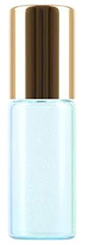 謎のぞき穴クリップShopXJ 香水 詰め替え アトマイザー ロールオン タイプ 5ml 携帯 持ち運び ミニ サイズ (ブルー)