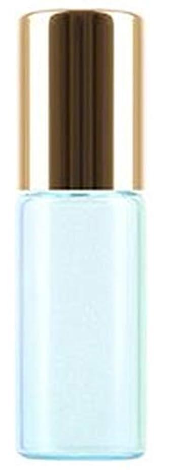 申し立てられた囲まれたつぶやきShopXJ 香水 詰め替え アトマイザー ロールオン タイプ 5ml 携帯 持ち運び ミニ サイズ (ブルー)