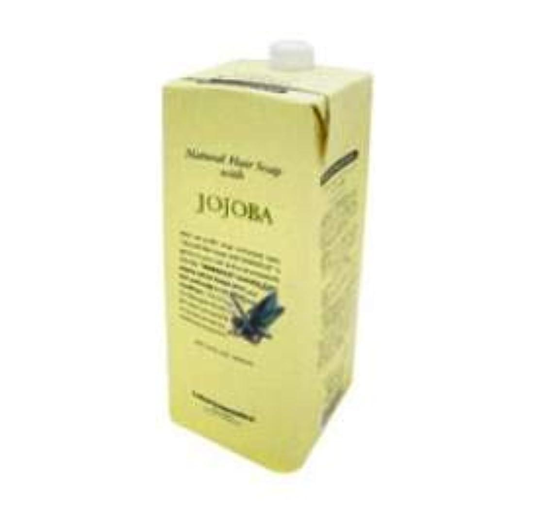 ダウンバッテリー解決するルベル ナチュラル ヘア ソープ ウィズ JO(ホホバ)1600ml 詰替え用